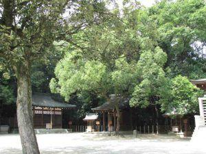 nishinomiyajinjya3